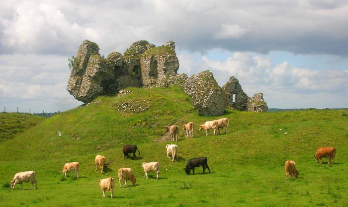 Restos del castillo de Clonmacnoise