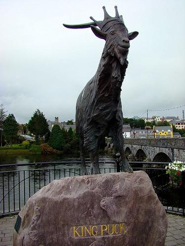 Puck Fair, una de las fiestas más antiguas de toda Irlanda
